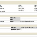 Santana Arrest Report 1