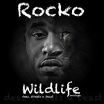 "Did Jay-Z & Kanye Bite Rocko Da Don's ""Wildlife"" Mixtape Cover Art?"