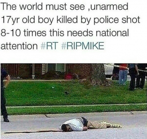 Mike Brown Unarmed St Louis Teen
