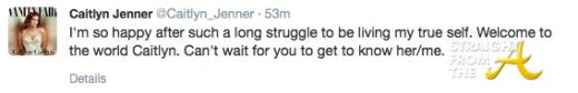 Bruce Caitlyn Jenner Twitter