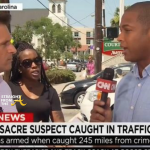 WATCH THIS! Don Lemon Heckled By 'Angry Black Woman' on Live TV… [VIDEO]