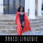 porsha williams naked lingerie-10