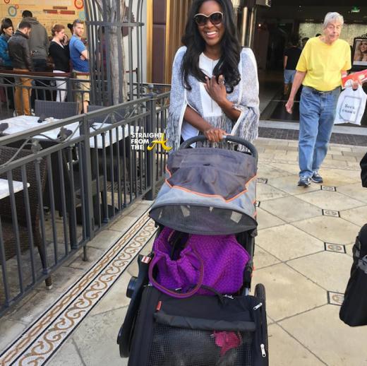 Kenya Moore Yorkies Stroller