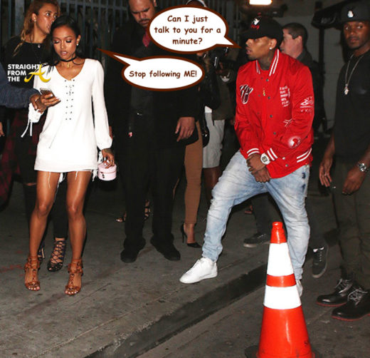 Karrueche Gets Restraining Order Against Chris Brown… *COURT DOCUMENTS*
