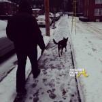City of Atlanta Paralyzed by 'Snow Jam 2014' // Mayor Kasim Reed Responds? #ATLSnow [PHOTOS + VIDEO]