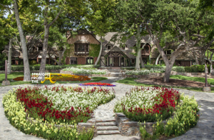 Neverland Ranch 4